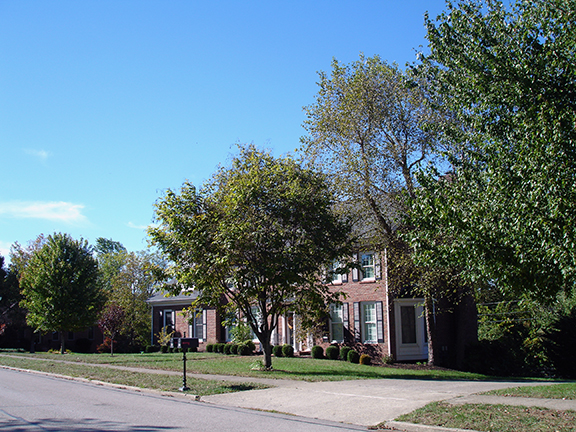 the Hartland Neighborhood in Lexington Ky