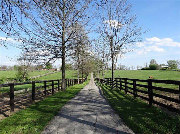 horse farm in Central Kentucky